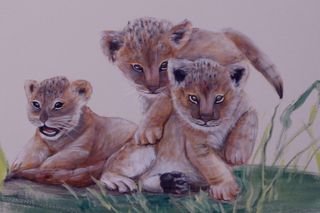 Safari-jungle-lion-cub-mural-web
