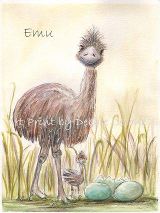 Australian-emu-700